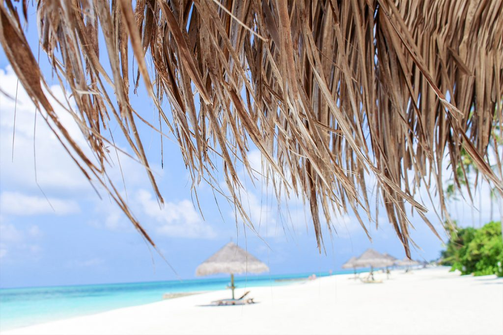 Maldive - More Than Travel