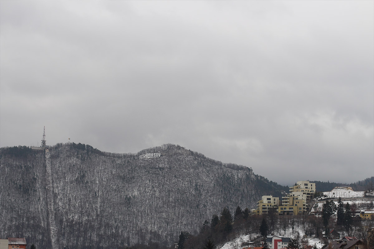 The Pines, Brasov - More than travel